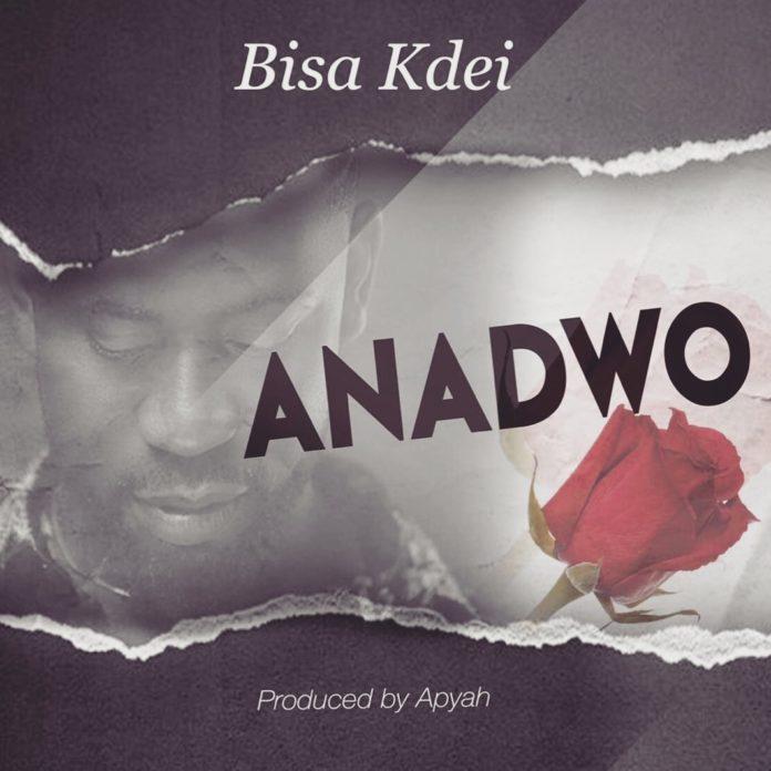 Bisa Kdei - Anadwo (Prod By APYA)
